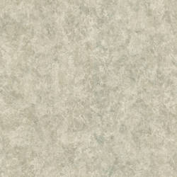 Raso Light Grey Texture 987-56543
