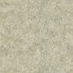 Raso Taupe Texture 987-56545