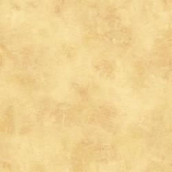 Orange Scroll Texture MLV257024