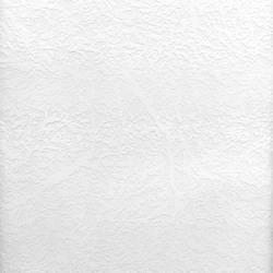 Brassica Organic Raised Texture Paintable 497-59017