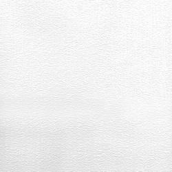 Velour Plush Corduroy Paintable 497-67467