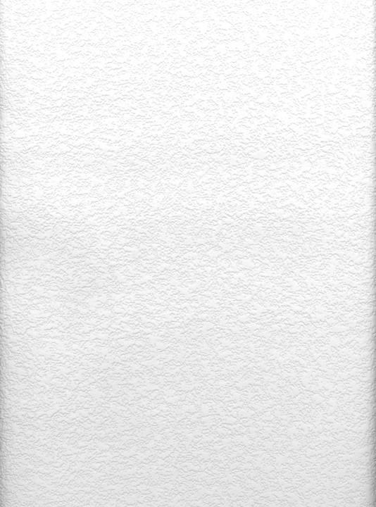 Styrene Raised Stucco Texture Paintable 497-96299