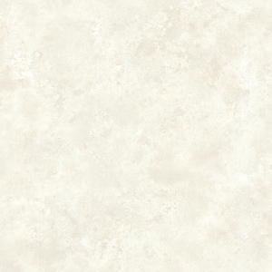 Aspasia Neutral Distressed Texture 484-68060