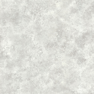 January Silver Distressed Texture 484-68071