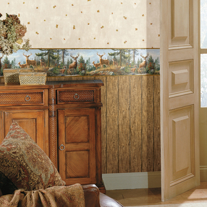 Rodeo Brown Outhouse Wood Wall Wallpaper HTM49416