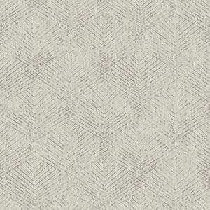 Fans Grey Texture 2662-001964