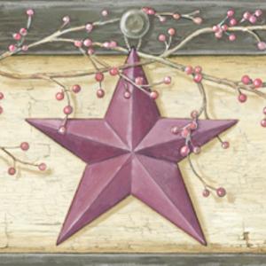 Ennis Wheat Rustic Barn Star Border PUR44603B