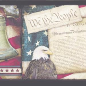 Franklin Black Liberty Rings Collage Border PUR44651B