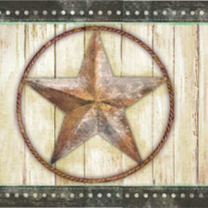 Theo Black Weathered Barn Star Border PUR44661B