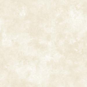 Sand Evan Texture Wallpaper QE14137