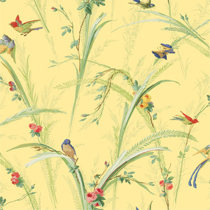 Yellow Meadow Lark Wallpaper QE19322