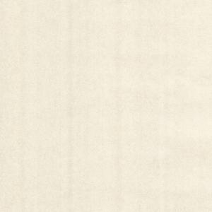 Grafito Champagne Texture Wallpaper 341580