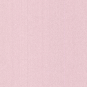 Grafito Rose Texture Wallpaper 341581