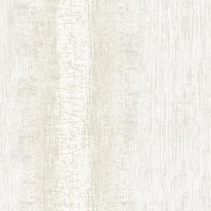 Mariella Pearl Ombre Stripe Texture RW41300