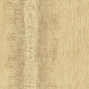 Mariella Brass Ombre Stripe Texture RW41305