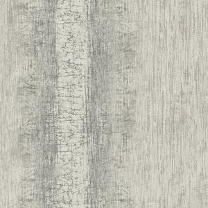 Mariella Pewter Ombre Stripe Texture RW41310