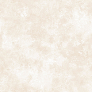 Evan Beige Patina Texture Wallpaper DLR14137