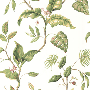 Eldora Ivory Evening Tropics Leaves Wallpaper DLR58421
