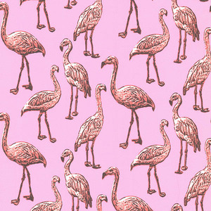 Flamingo Pink Graphic 347501