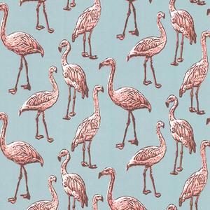 Flamingo Turquoise Graphic 347502