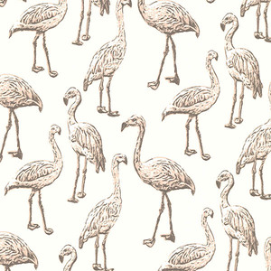 Flamingo Light Grey Graphic 347503