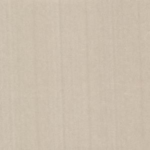 Alia Champagne Texture 347572