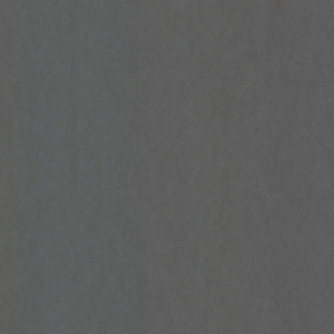 Alia Charcoal Texture 347577