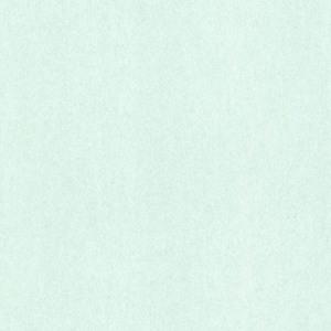 Fog Mint Texture 347578
