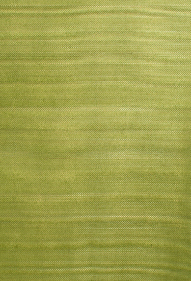 Wakumi Olive Grasscloth Wallpaper 63-54757