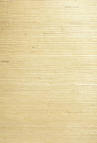 Shan Light Green Grasscloth Wallpaper 63-54764