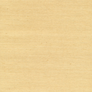 Wan Beige Grasscloth Wallpaper 63-65412