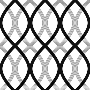 Contour Black Geometric Lattice Wallpaper 2535-20668