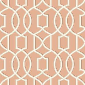 Quantum Coral Trellis Wallpaper 2625-21816