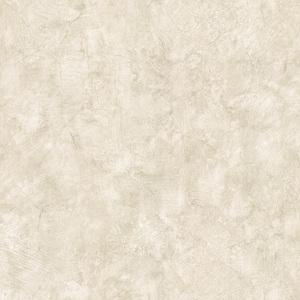 Angelo Sage Plaster Texture 412-32861