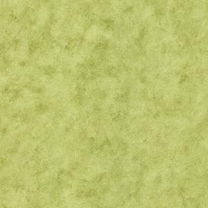Pergoda Light Green Pergoda Texture 412-54576