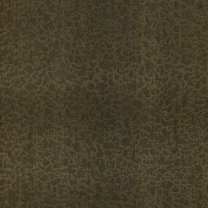 Bangkok Olive Plaster 412-56913