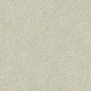 Jaipur Light Green Elephant Skin Texture 412-56941