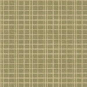 Prairie Moss Gingham CCB02141