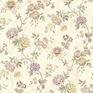 Chrysanthemum Lilac Jacobean CCB02214