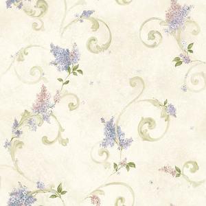 Lilac Blush Acanthus CCB21601
