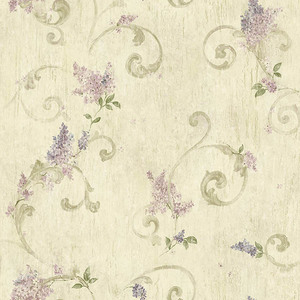 Lilac Lilac Acanthus CCB21605