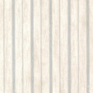 Parker Blue Stripe CCB64121