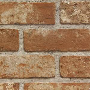 Exposed Brick WW749