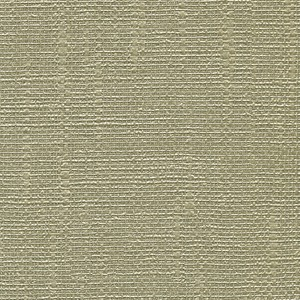 Dianne Birch Textured Shiny Lines Wallpaper WD3032