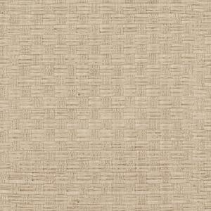 Texture Beige Woven 3097-50