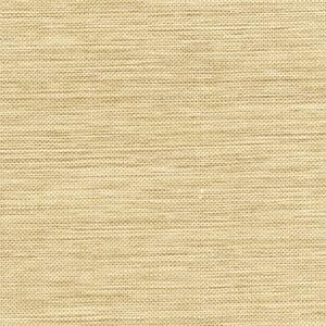 Kenshin Neutral Grasscloth 2693-54786