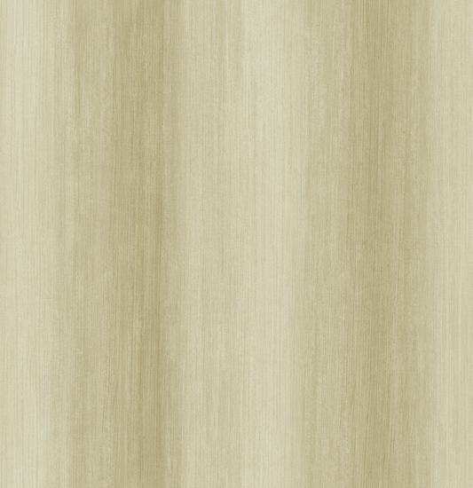 Ombre Stripe ND50305