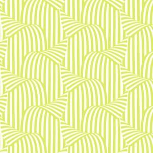Peeling Stripe - Lime NN158