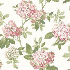 Hydrangea Wallpaper AK7447