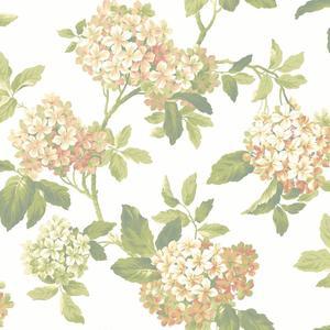 Hydrangea Wallpaper JT7656